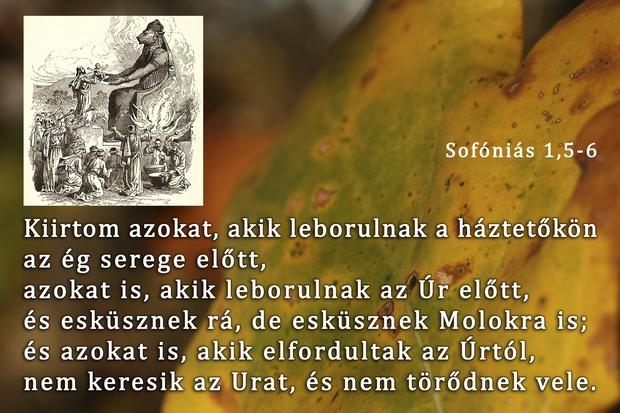 Sofóniás próféta könyve 1,5-6