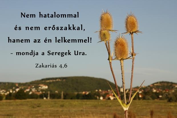 A kispróféták gyakran használták a Seregek Ura elnevezést.