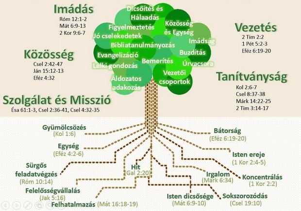 A gyülekezet alapelvei és tevékenységi körei
