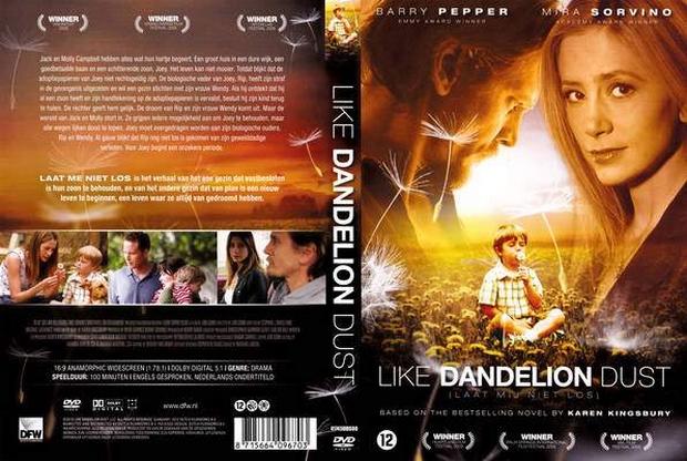 A film Karen Kingsbury bestsellere alapján készült.