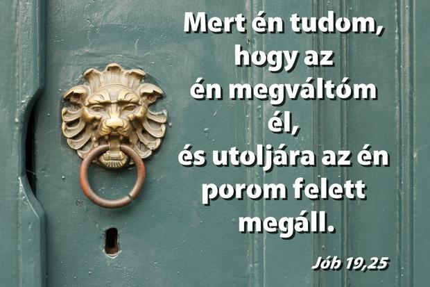 job19_25