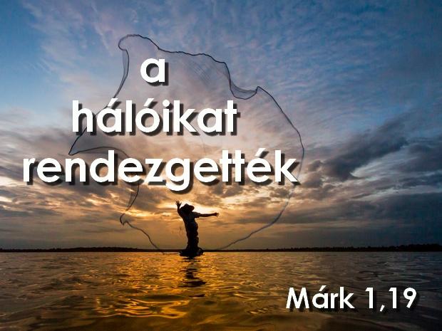 m_haloikat