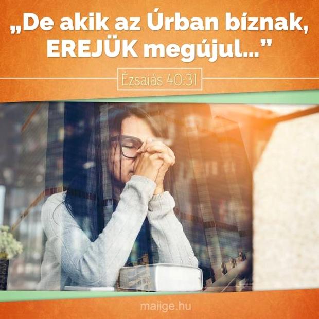 blogbejegyzes001